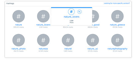 Quickly add to your customized feeds by searching for users and hashtags